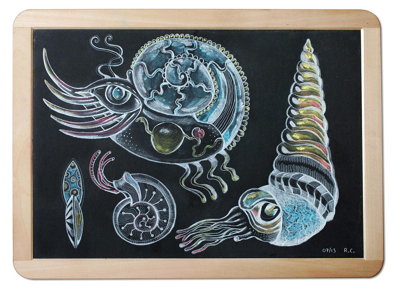 Ocean snake