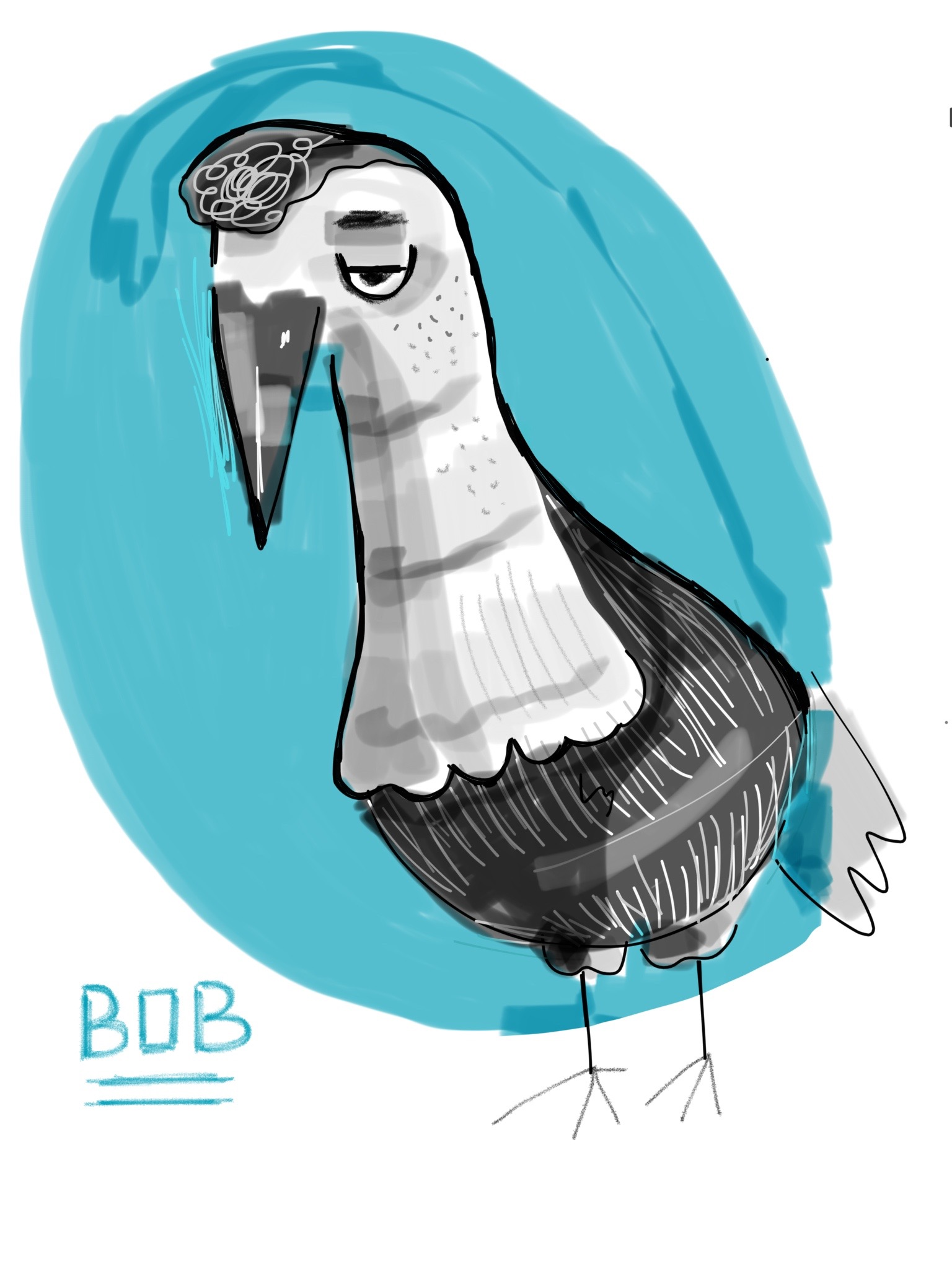 digital bird